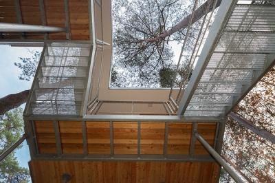 Tree House Baumraum