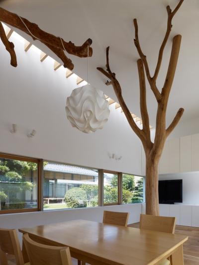 Tree House Hironaka Ogawa