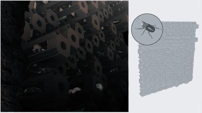 Creature Code Visiondivision