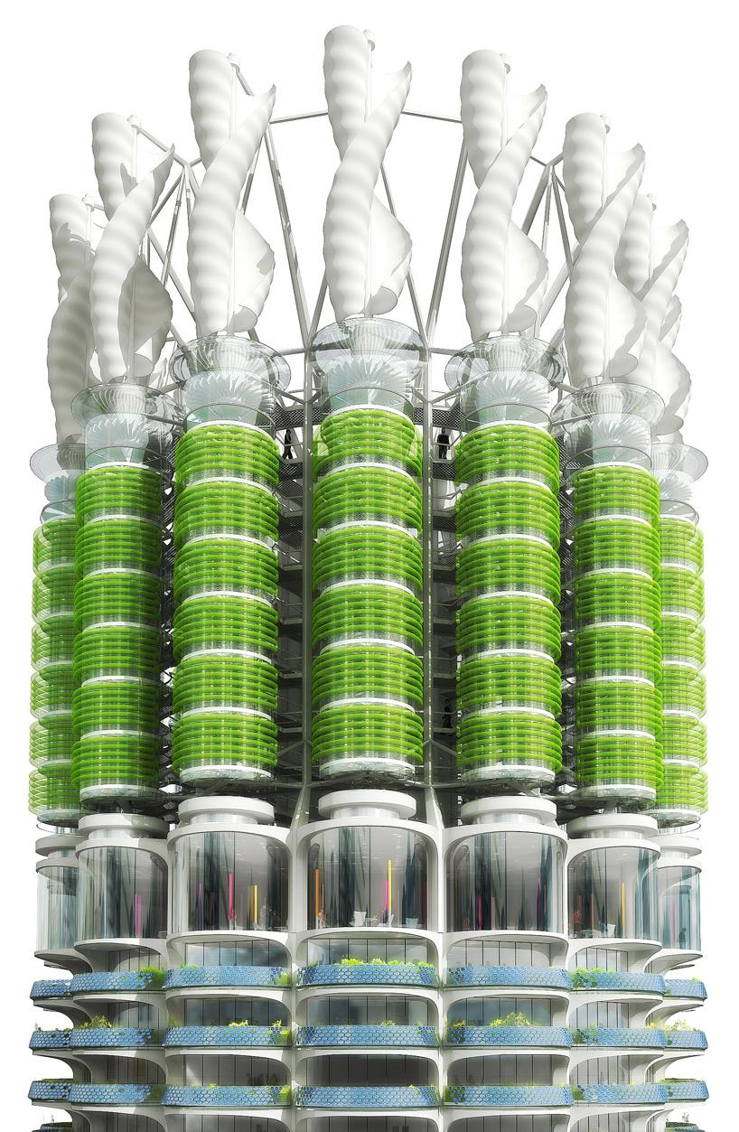 Algae Green Loop By Influx Studio