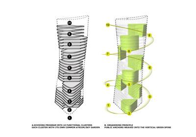 Garden Ribbons ShaGa Studio