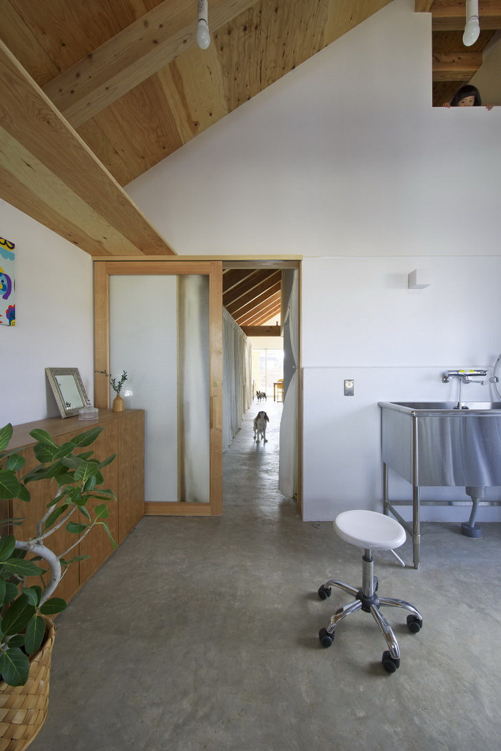 Dogsalon in oita by naoko horibe for The dog house pet salon