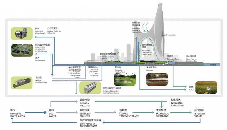 08 ecology diagram