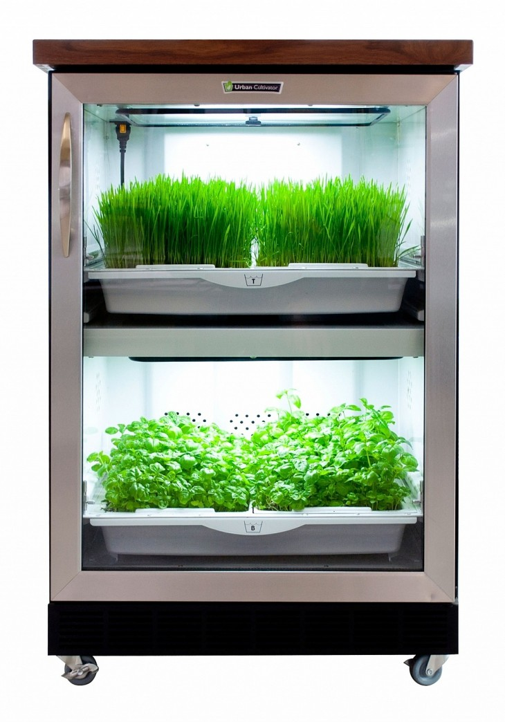 Urban cultivator brings home farming to life for Indoor gardening market size