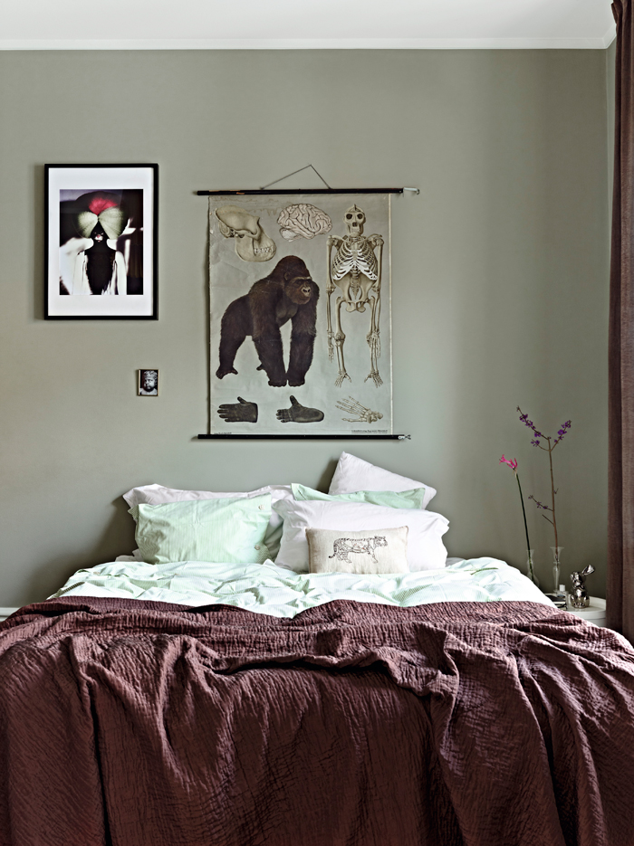 Home Designer 05