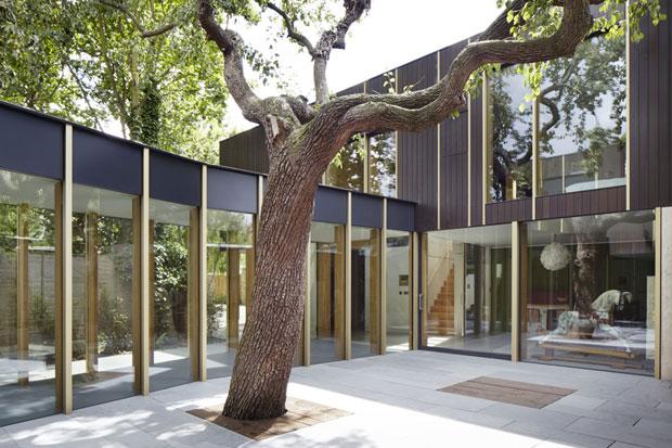 TREE-HOUSE-04