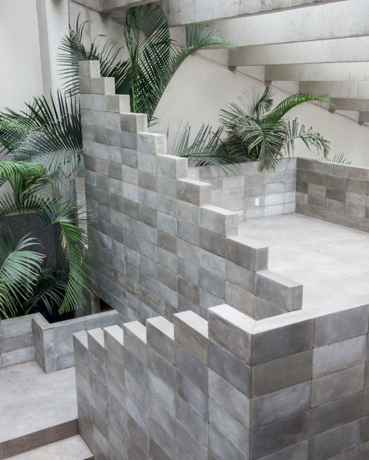 Mexico City House (8)