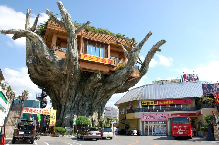 Banyan Treehouse Cafe (1)