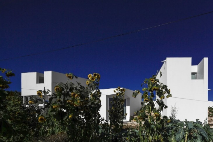 Texugueira House by Contaminar