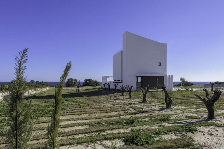 Albatross Residence by Andreas Chadzis (5)