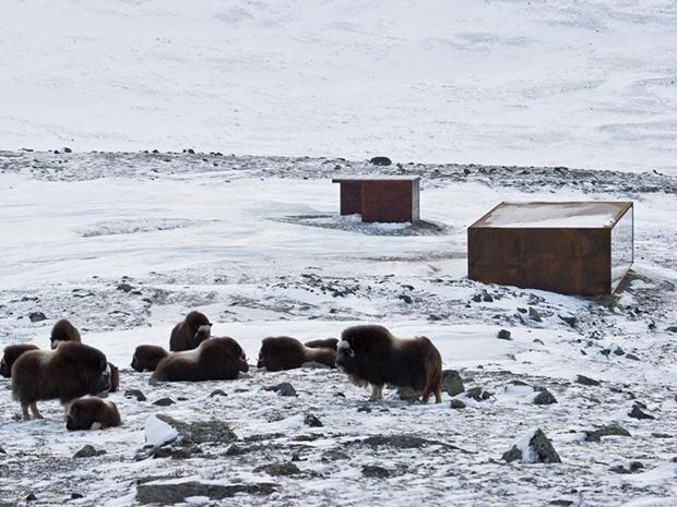 Tverrfjellhytta, Norwegian Wild Reindeer Pavilion – Snøhetta (5)