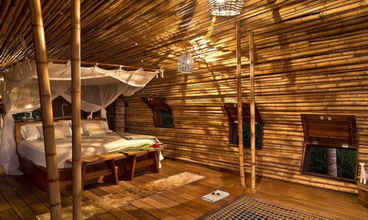 treehouse-suite-1