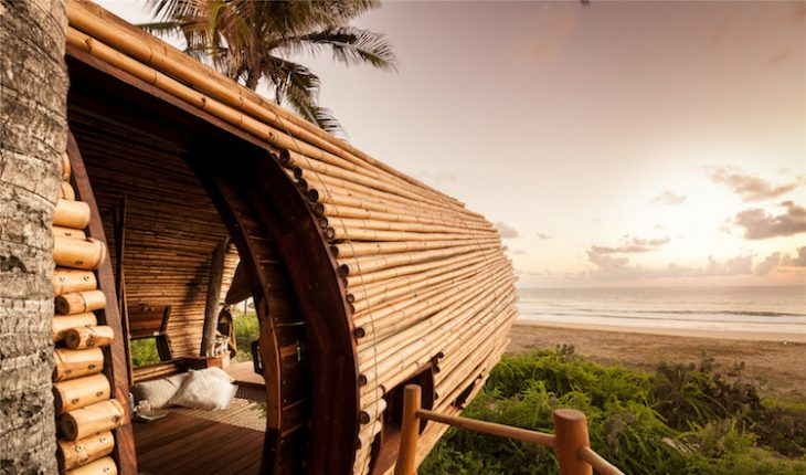 treehouse-suite-6