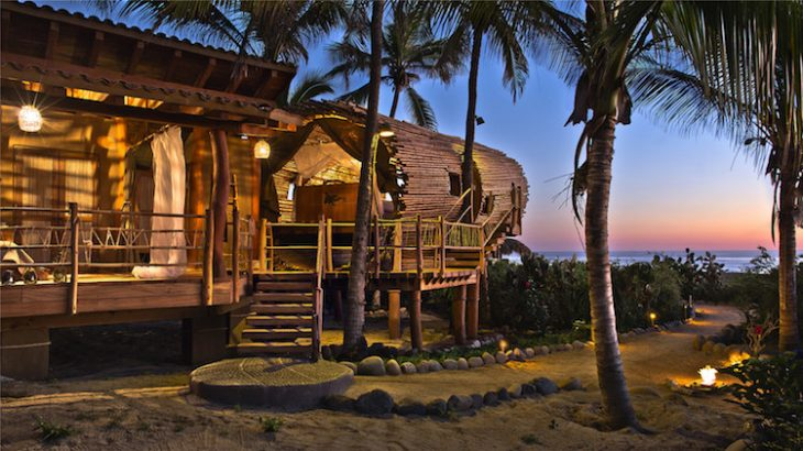 treehouse-suite-8