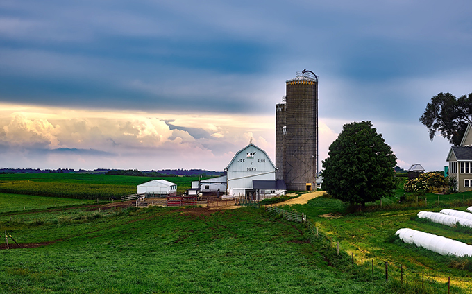 Five Practical Tips for Expanding Your Farm