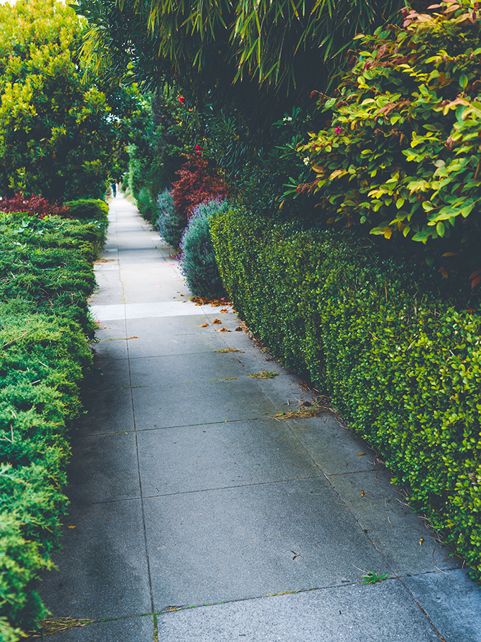 3 Tips to Instantly Improve Your Curb Appeal