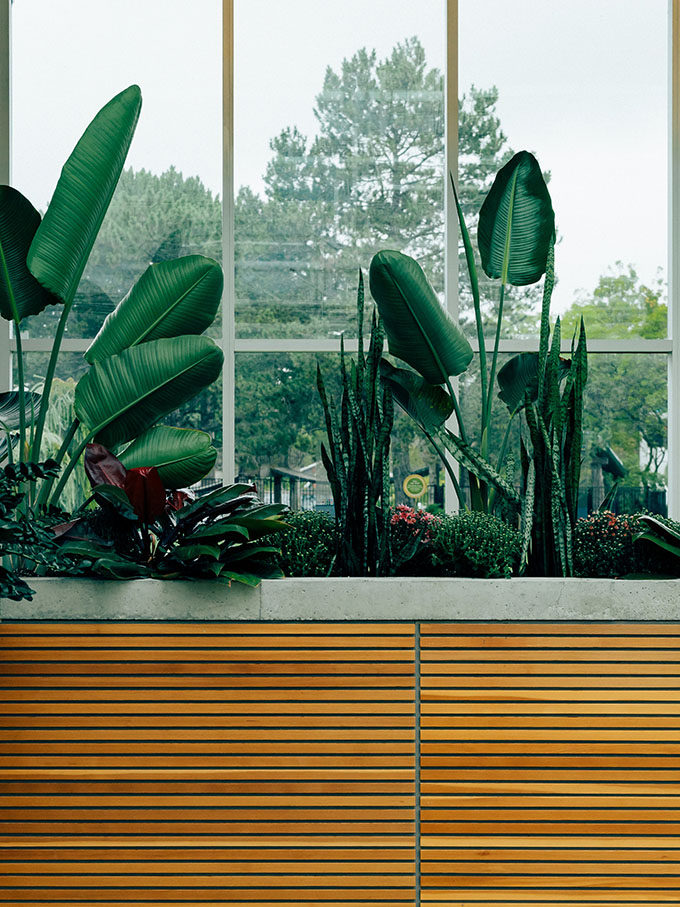 A Quick and Easy Guide to the Perfect Indoor Garden