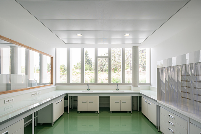 MMSH - Maison Méditerranéenne des Sciences de l'Homme